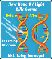 How NANO-UV™ Light Kills Germs